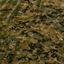 USMC digital woodland