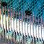 blue sardine light