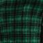 зеленая клетка
