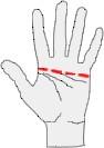выбор_размера_перчаток